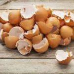 Почему ненужно выбрасывать яичную скорлупу